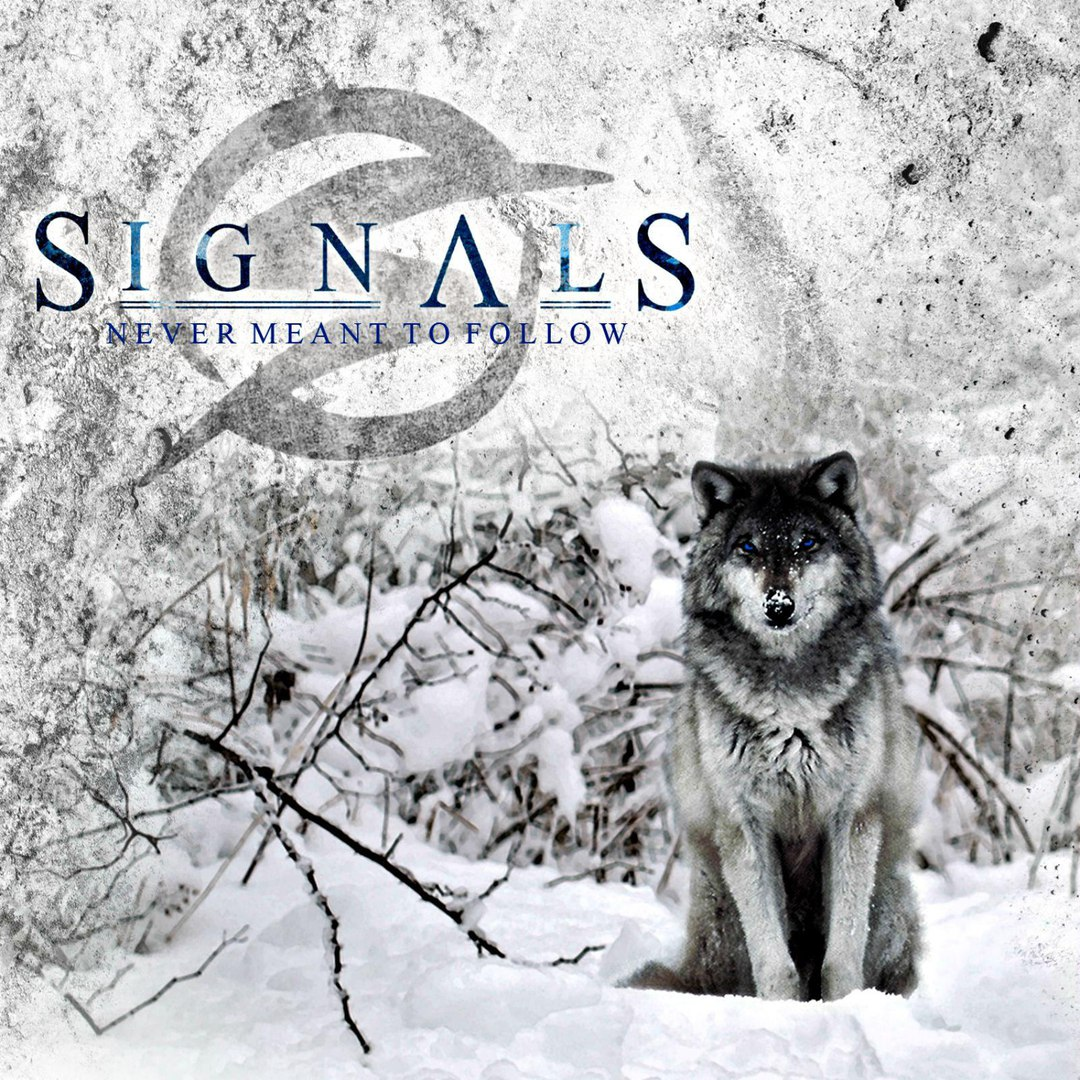 Signals - Never Meant To Follow (2015)
