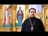 Православный календарь 22 ноября