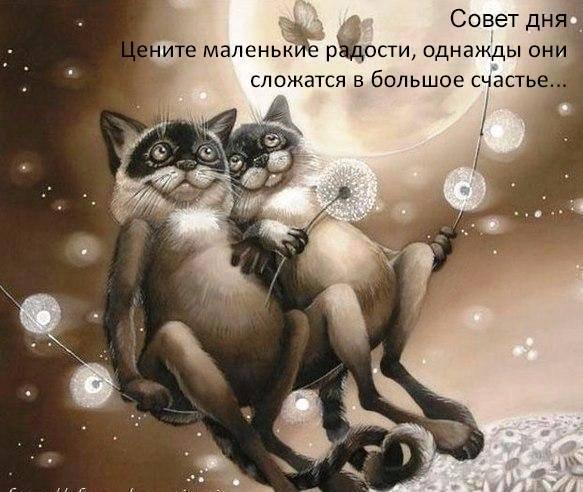 Записная книжка Натальи - Страница 5 -m73FTs9Cck