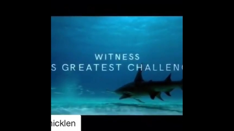 "Raveena Tandon on Instagram ""Repost @paulnicklen with @get_repost ・・・ Video by @TeamSharkwater"