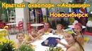 В аквапарке в Новосибирске. Самый крутой крытый аквапарк. 11.18г. Семья Бровченко.
