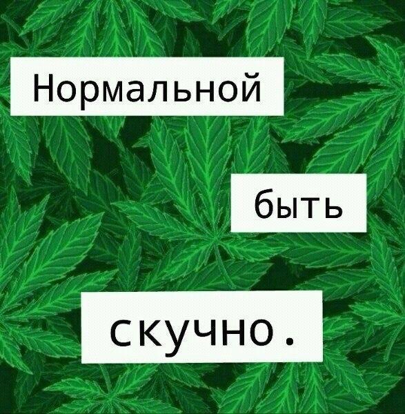 Фото №391375534 со страницы Иры Кулык