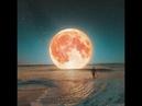 На антарктическом полуострове Австралия которой нет падают звезды с купола Плоской Земли