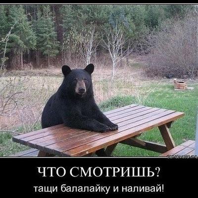 Медведь Бурый, 18 августа 1985, Москва, id50754676
