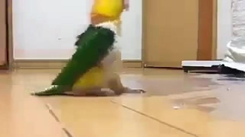 шлёп -нога
