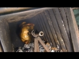 Готовим  курицу гриль