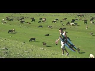 «Кочевой вейкборд»: житель Киргизии прокатился по горной реке с помощью коня