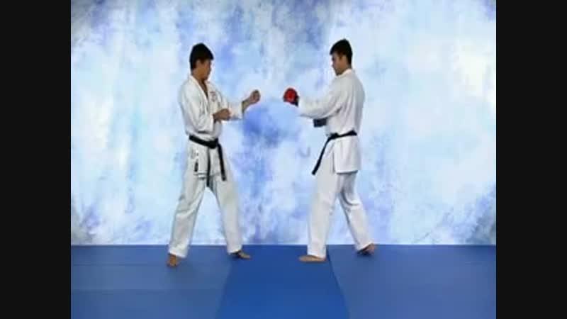 Machida Karate for MMA Volume 1