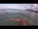заплыв в Тихом океане. 13.04.18. Тайланд.