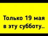 В субботу 19 мая приезжайте с 10 до 16 часов