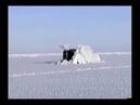 Впечатляющее зрелище всплытия подводных лодок из подо льда