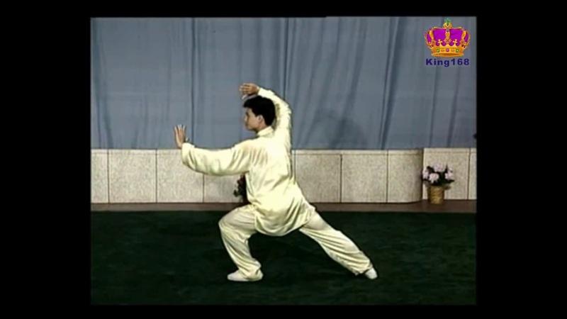 陳思坦~88式太極拳全套示範(配宇幕背面) Yang style 88 form Tai Chi