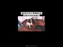 180814 Обновление вейбо-стори Чжэнтина.