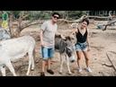 Donkey Sanctuary Cave Tour | Aruba Part 2