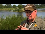 3 Duck Calling Techniques for Hunting Mallards