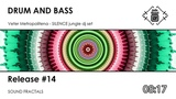 drum and bass Veter Metropolitena - SILENCE jungle dj set (mix)