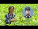 애국의 열정으로 꽃피는 고장 -연산군 대평리후방가족들을 찾아서-