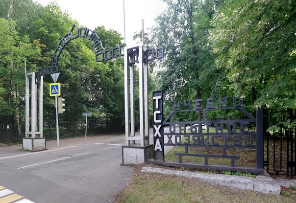 Вход в Тимирязевский парк, Дендралогический парк и ещё кучу мест.  7 июля 2018