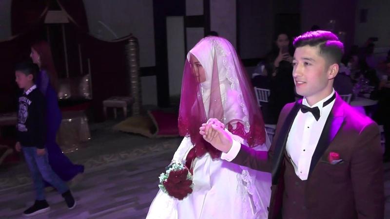 Muhteşem düğün girişi ilk dans zeybek nikah eğlence