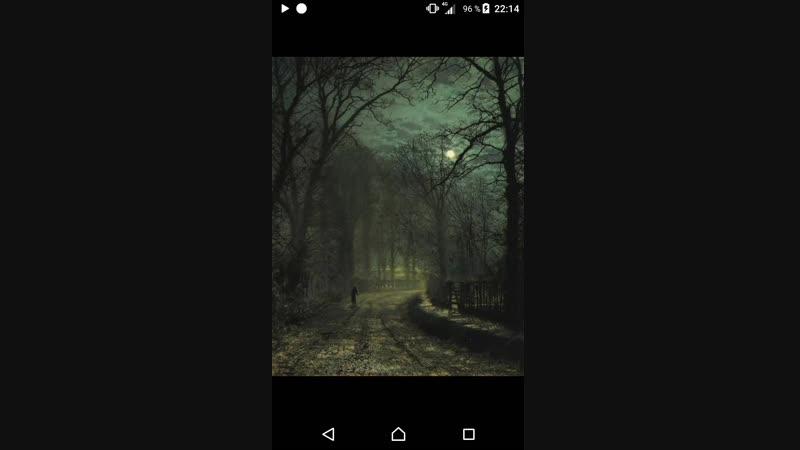 ScreenRecord_2018-12-05-22-14-30.mp4