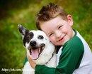 «Собака — это единственное существо на земле, которое любит тебя больше, чем себя».