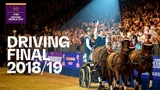 Six Drivers - One Champion Driving Showdown in Bordeaux! FEI Driving World Cup Final