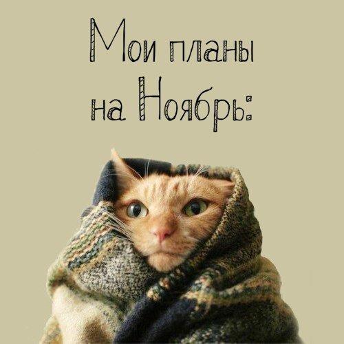 Фото №456271866 со страницы Анастасии Мищериной