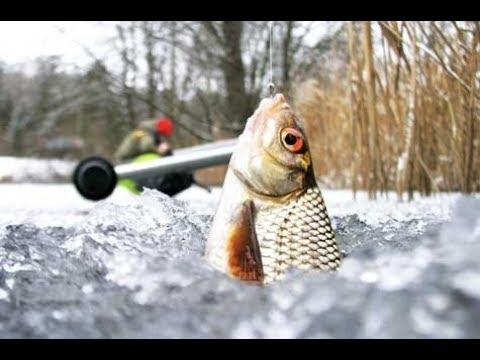 Рыба ВОРУЕТ УДОЧКИ в Лунку. Зимняя Рыбалка в Палатке. Яркие Поклёвки Плотвы и Окуня