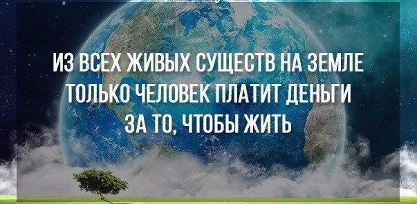 https://pp.vk.me/c7001/v7001121/21698/iLmGbT1ywcw.jpg