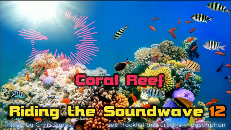 Riding The Soundwave 12 Melodic Trance EDM Mix DJset