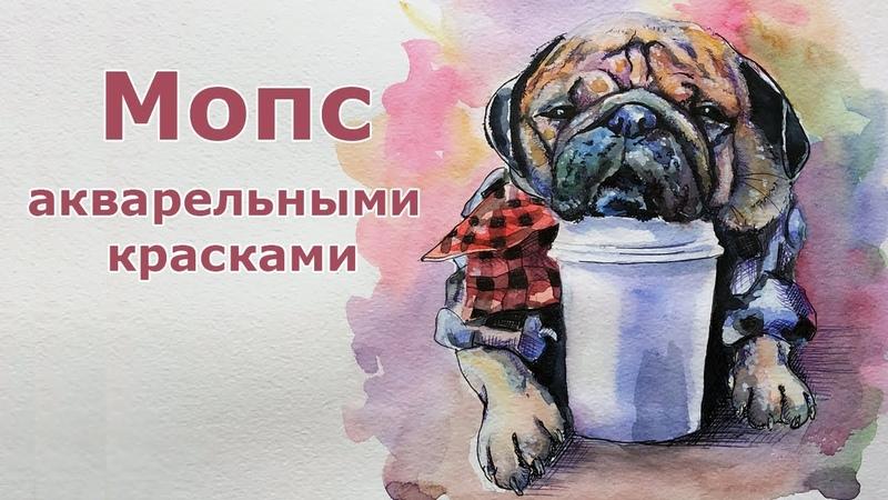 Мопс акварелью - Pug watercolor speed painting - Andrew Pugach
