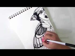 как нарисовать птицу дудлинг