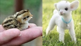 Cute baby animals Videos Compilation cute moment of the animals Cutest Animals #7