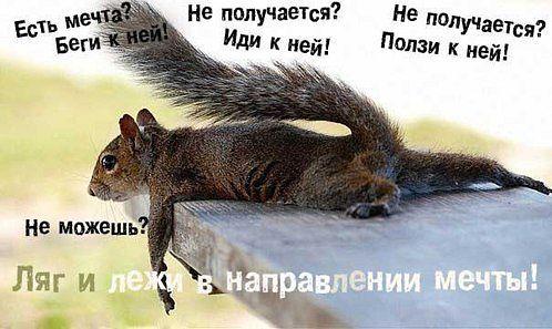 http://cs621227.vk.me/v621227496/50ae/NOTItBOo9x0.jpg