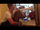Конь в Бургер Кинге (окно 2)