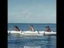 Moto-surfing