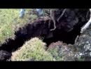 Leilani Hawaii Lava Fissure 10 June 5 At 6pm
