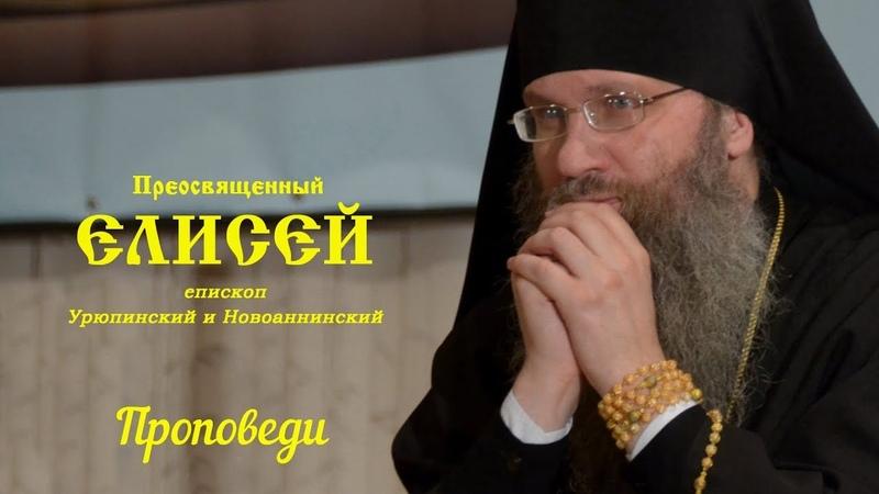 Епископ Елисей Проповедь День памяти свв блгвв кнн Петра И Февронии