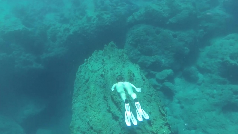 Diving cut2.mp4
