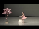 2017 Korea Ballet - K-PROBA 제6회 한국프로발레협회 콩쿨 초등부 중학년 특상 봄을 품은 궁 41권 린