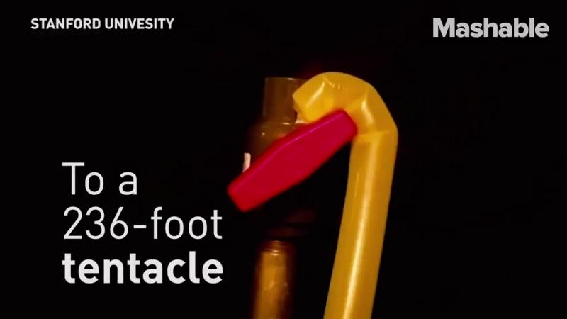 Этот робот выглядит жутким и живым Разработки стэнфордского университета