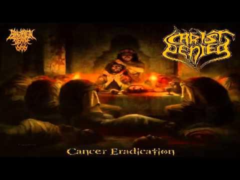 Christ Denied - Cancer Eradication (2013) {Full-Album}