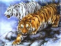 Примитивные звери, сами не очень большие, питались главным образом мелкими беспозвоночными - они были насекомоядными...
