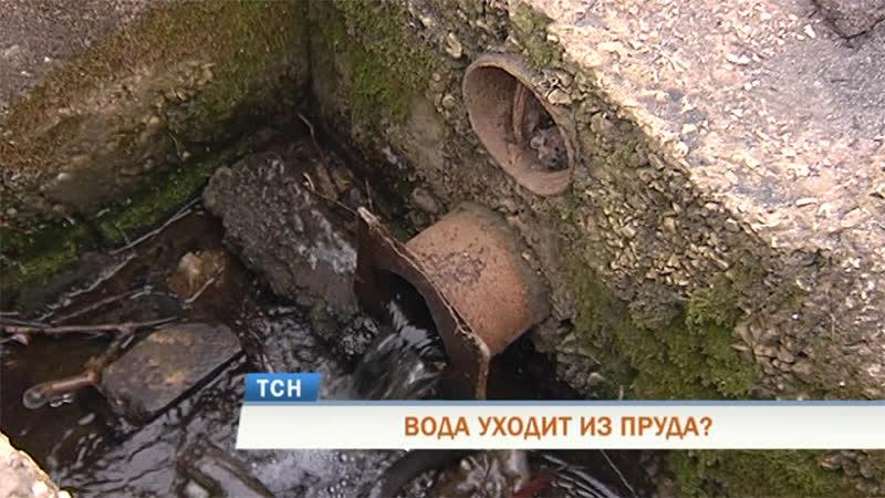 Над водоёмом в микрорайоне Бахаревка нависла угроза полного осушения