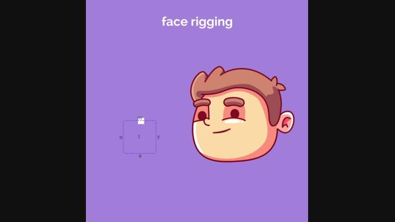 Face rigging