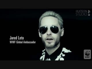 Джаред Лето поддерживает WWF в День Земли