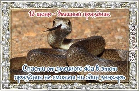 https://pp.vk.me/c7003/v7003004/1ec75/Eje_H8ouVIQ.jpg