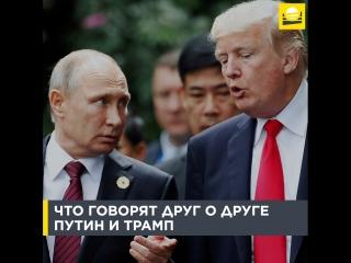 Что говорят друг о друге Путин и Трамп