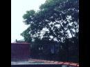 Походу,мы сейчас уплывем) А мне нравится! #nyc#home#rain#weather