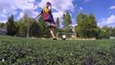 2 Free kicks
